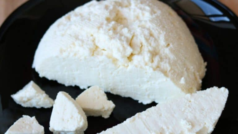 Paneer: The New Superfood (Yes and No's of a Vegetarian Diet) + 6 Ways to Eat