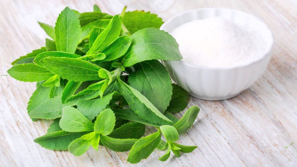 Stevia Its All About Journey