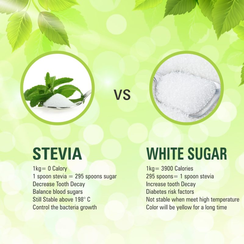 Stevia vs Sugar Its All About Journey